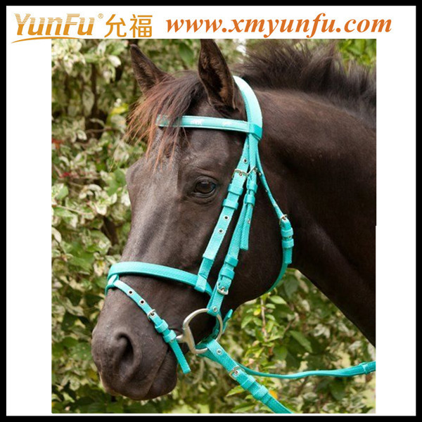 Custom Factory Horse halter buckles