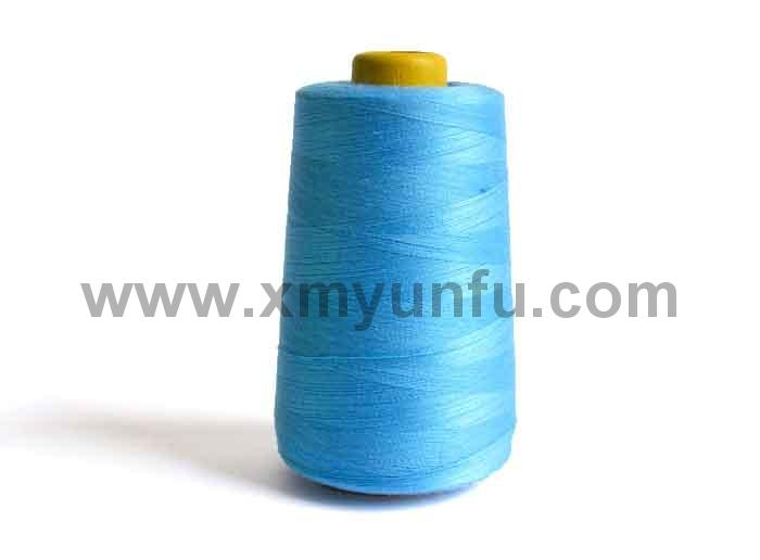 Polyester Clothing, Leatherware and Bag Sewing Thread3