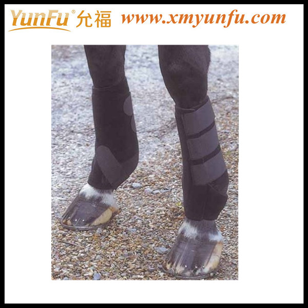 Wholesale Boots for horse