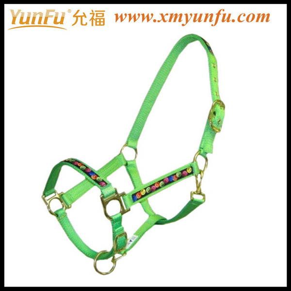 Design your own Horse Halters