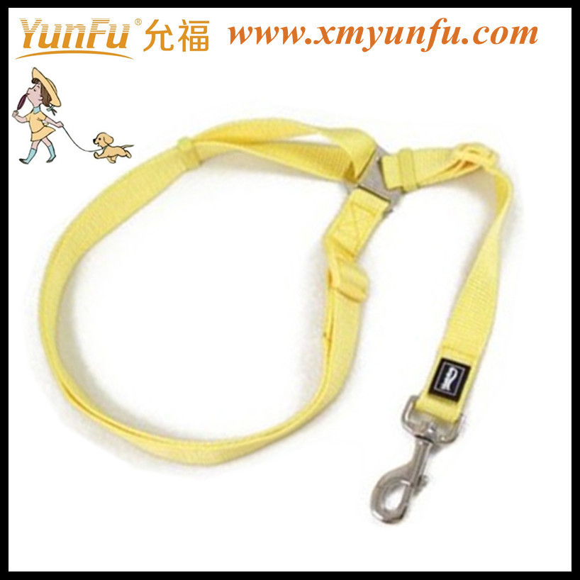 Cheap fashion dog leash yellow pet leash dog lead