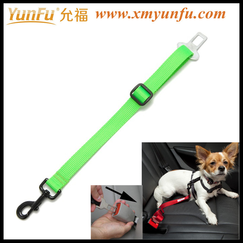 Sport pets leash personal dog collars