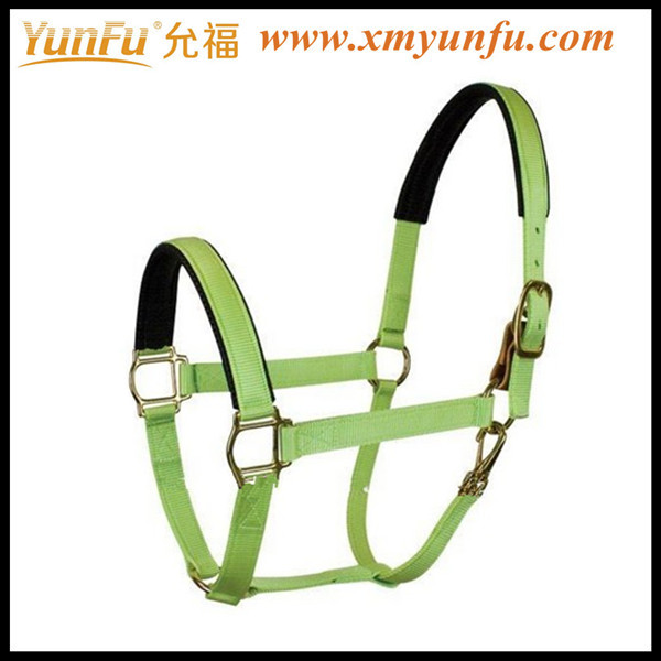 Custom Factory Price Halter for horse