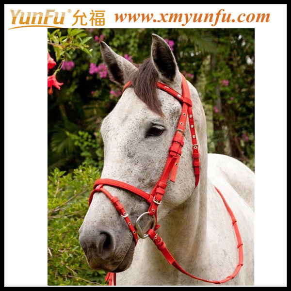 Custom Factory Horse halters and lead ropes