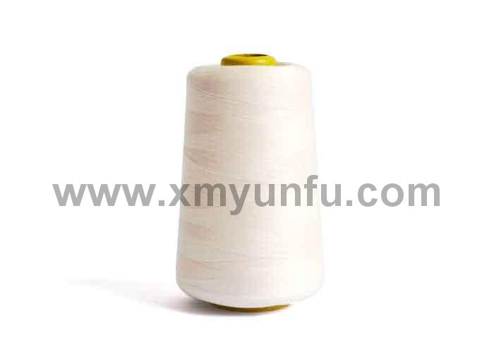 Polyester Clothing, Leatherware and Bag Sewing Thread1
