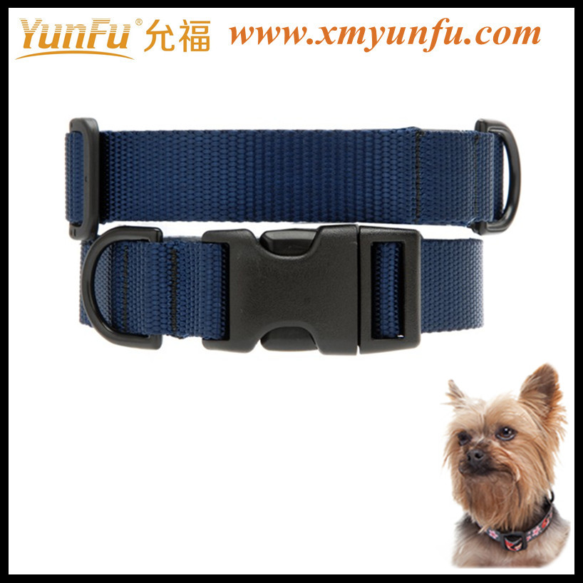 Factory Price Nylon Colorful Buckle cheap Blue dog collars
