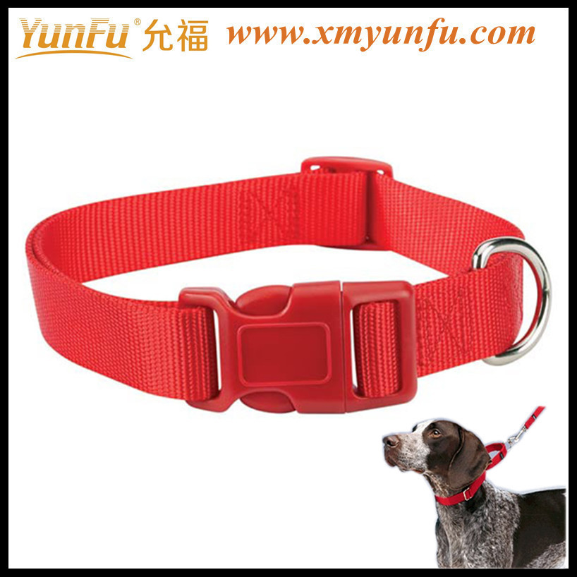 Fashion Pretty Cat & Dog safety collars