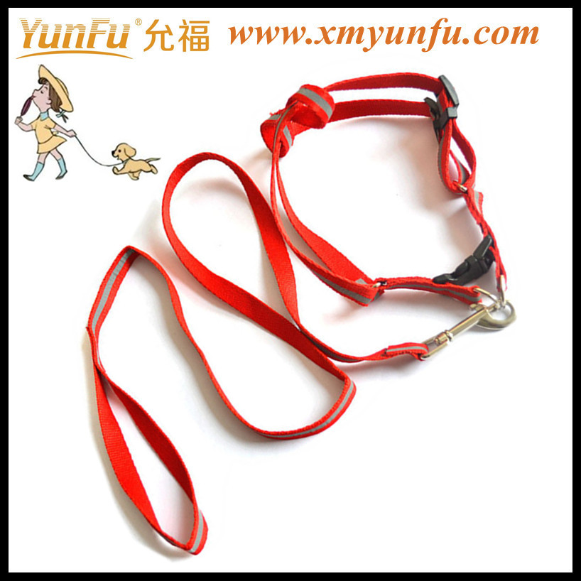 Personalized tag reflective pet collar & lead