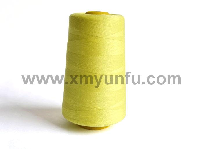 Polyester Clothing, Leatherware and Bag Sewing Thread10